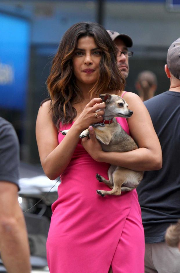 Priyanka Chopra Shooting On The Sets Of 'Isn't It Romantic' Movie