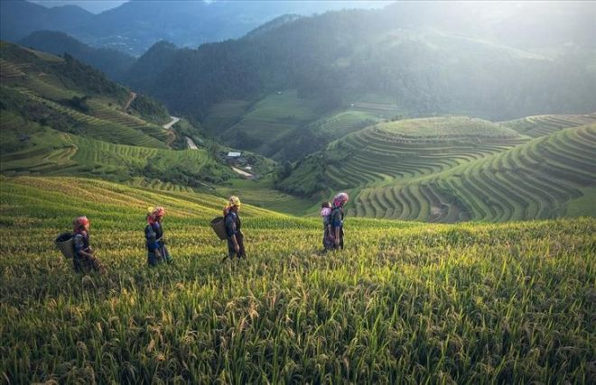 The Top 13 Must Visit Places In Vietnam